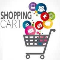 3 product shopping cart website - $500