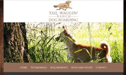 Tail Waggin' Ranch Dog Boarding Website