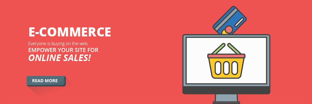 E-Commerce Websites, custom website design and hosting, wordpress website design, wordpress resources, helena, MT, divi theme tutorials