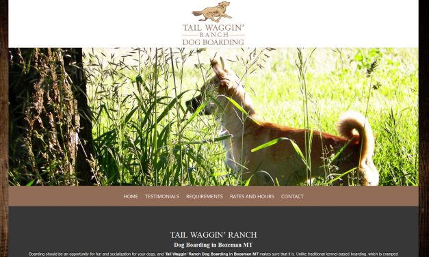 Custom Built WordPress Website – Tail Waggin Ranch